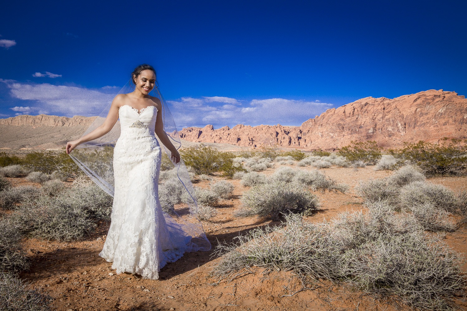 Valley of Fire Wedding Photography - Angelica (10 of 10).jpg