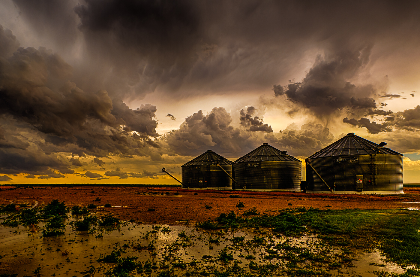 Grain Bins After the Storm