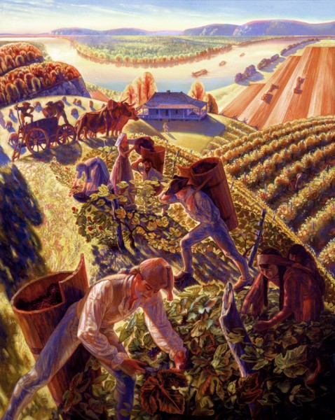 Ste. Genevieve Wine Harvest