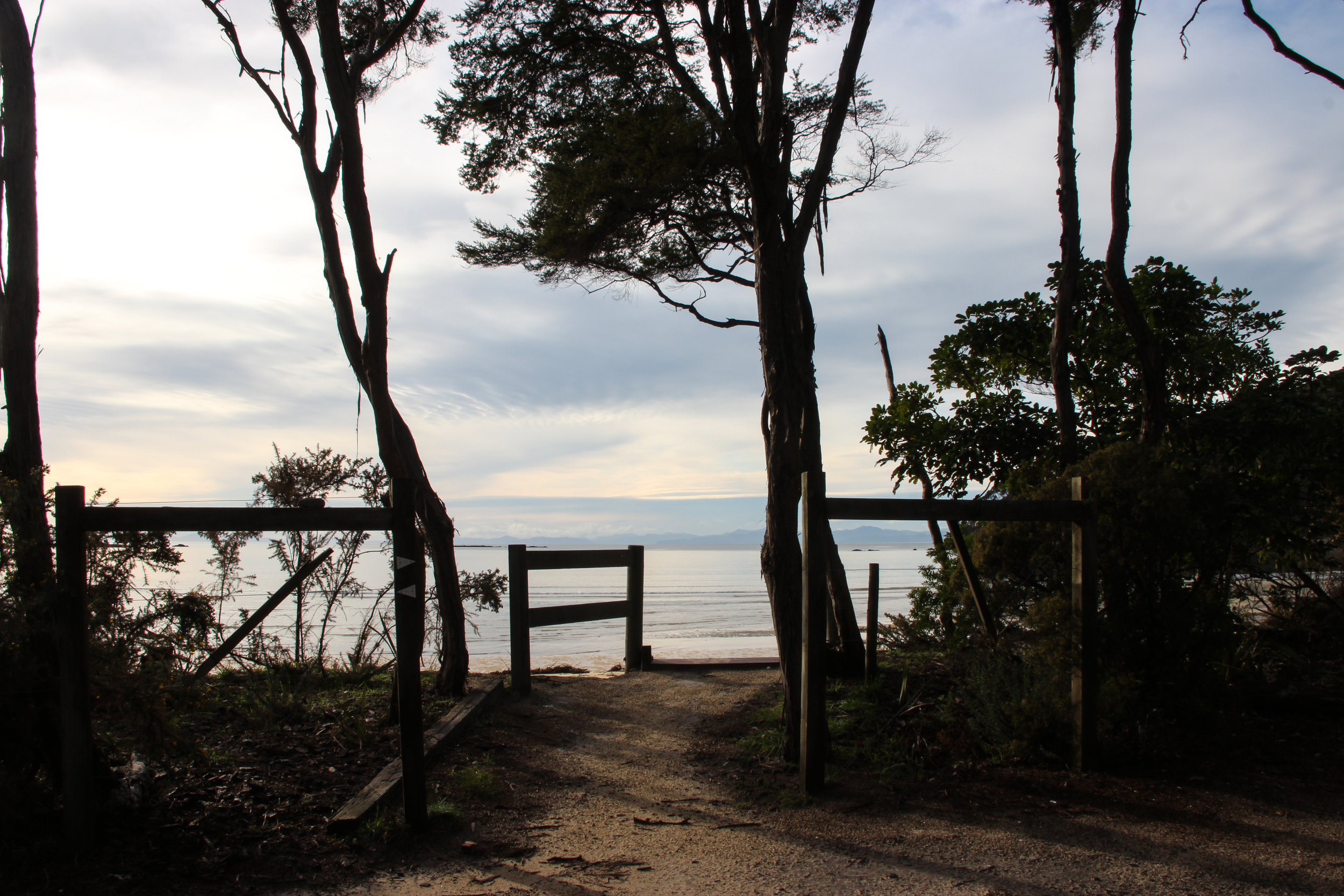 The view from Bark Bay Hut, which sits in a clearing by a small estuary.