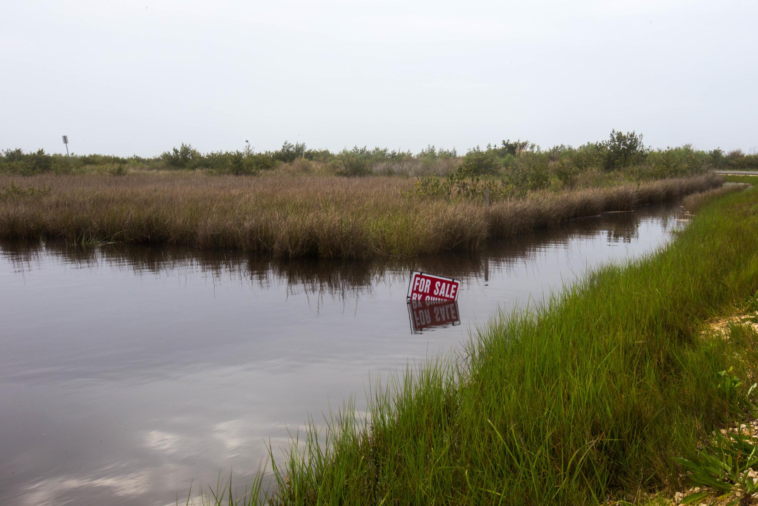 Wetlands for sale, Grand Isle, La