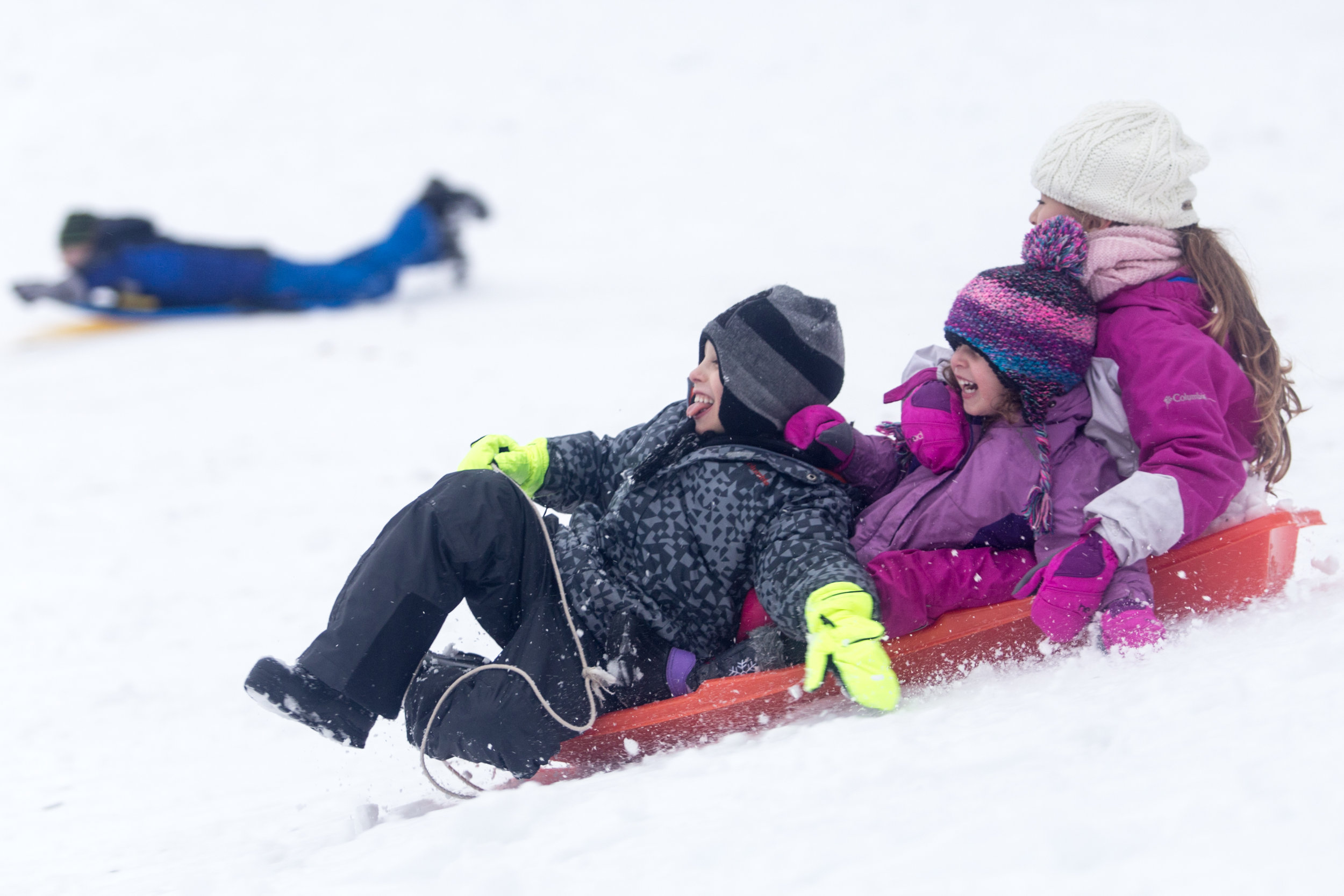 Siblings (from left) Yuval, 7,   Amit, 4, and Itay Gelbmab, 7, of Israel, sled down a hill in Amory Park, Brookline, Mass., Dec. 17, 2016, while enjoying their first New England winter since their family moved to Brookline this year.