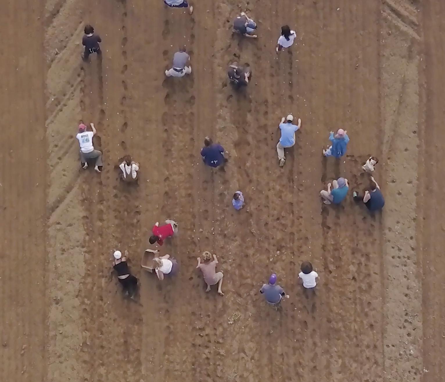 Farming Drone Shot.png