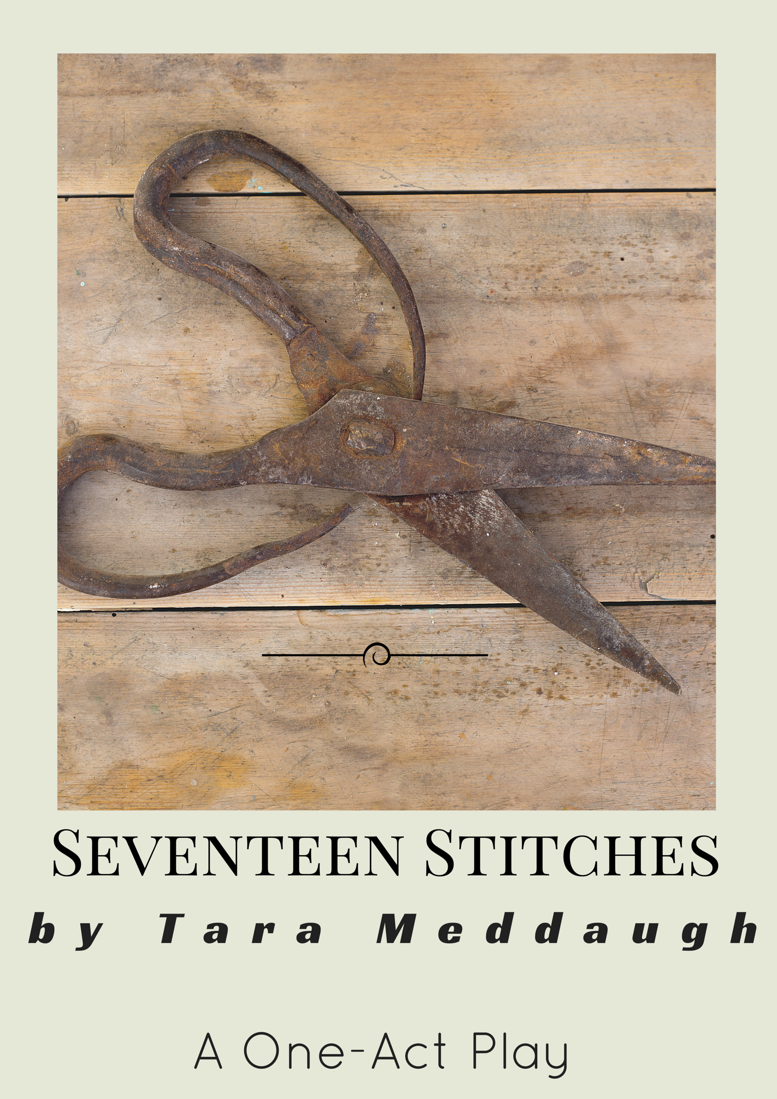 Seventeen Stitches Cover.png