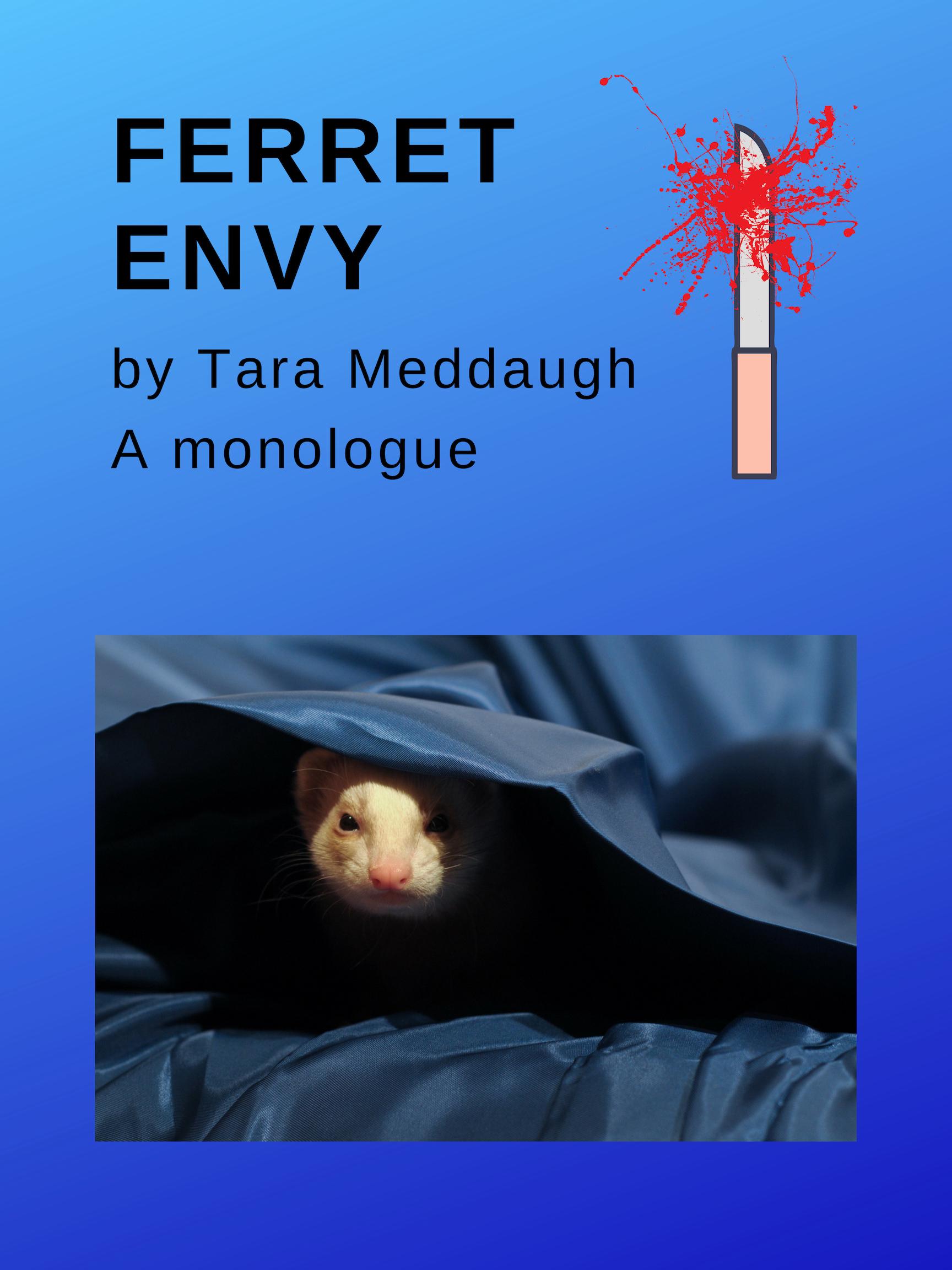 ferret Envy (1).jpg
