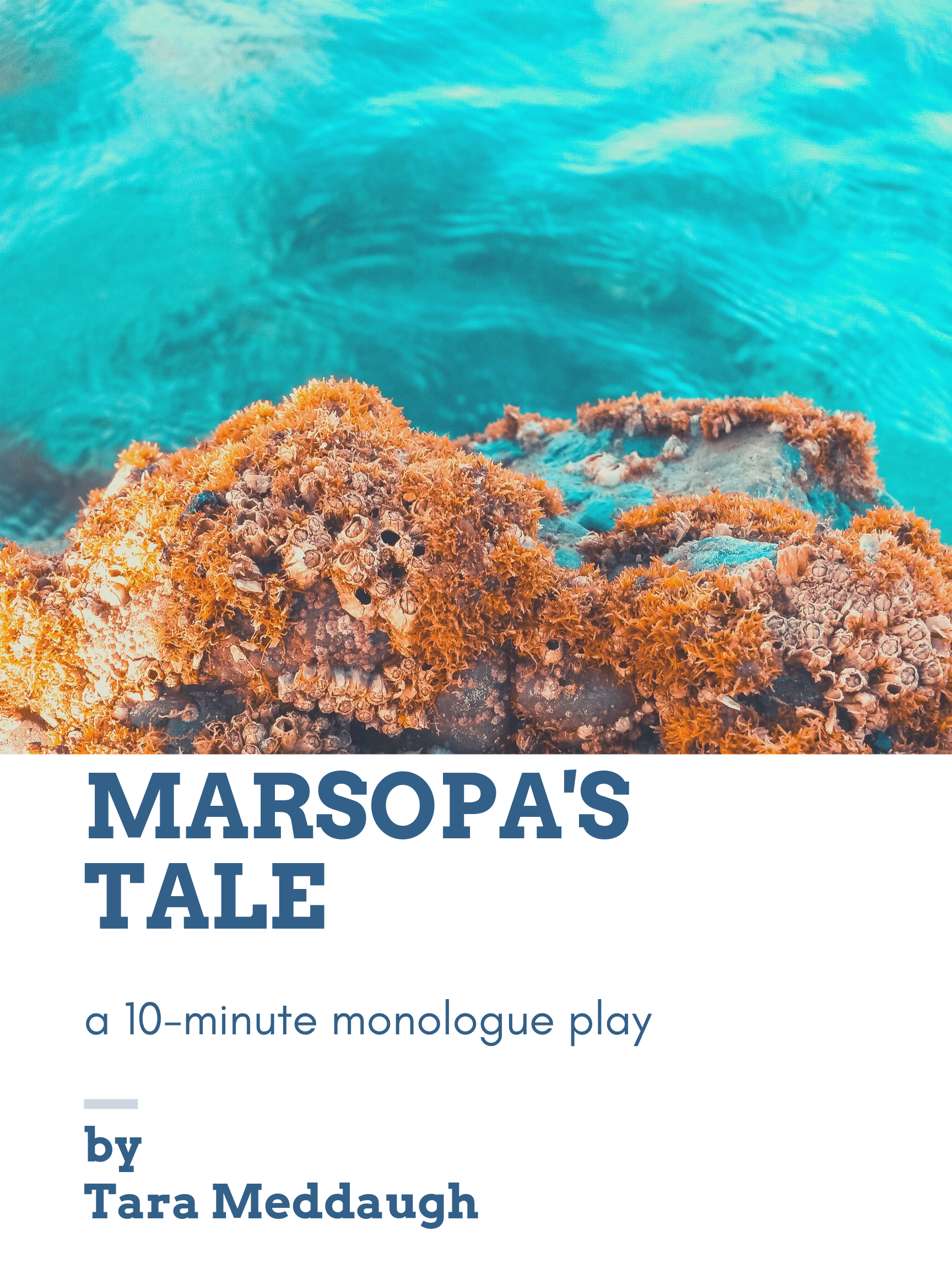 marsopa's tale cover.png