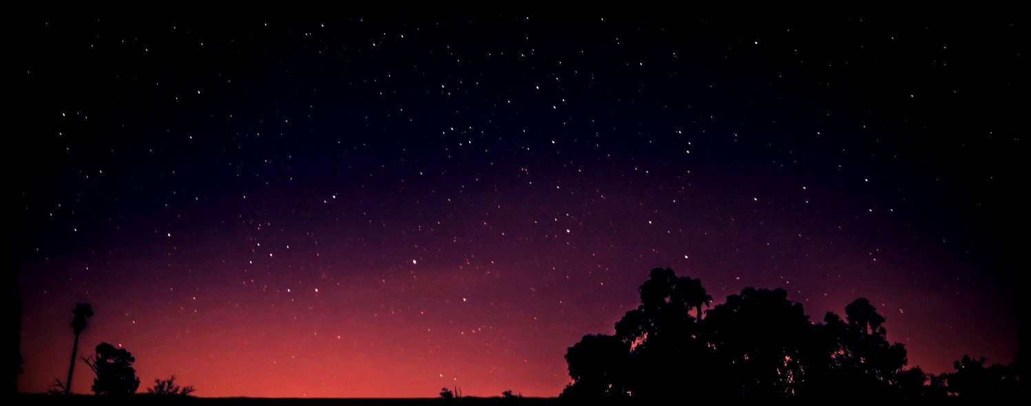 night sky with silhouettes.jpeg