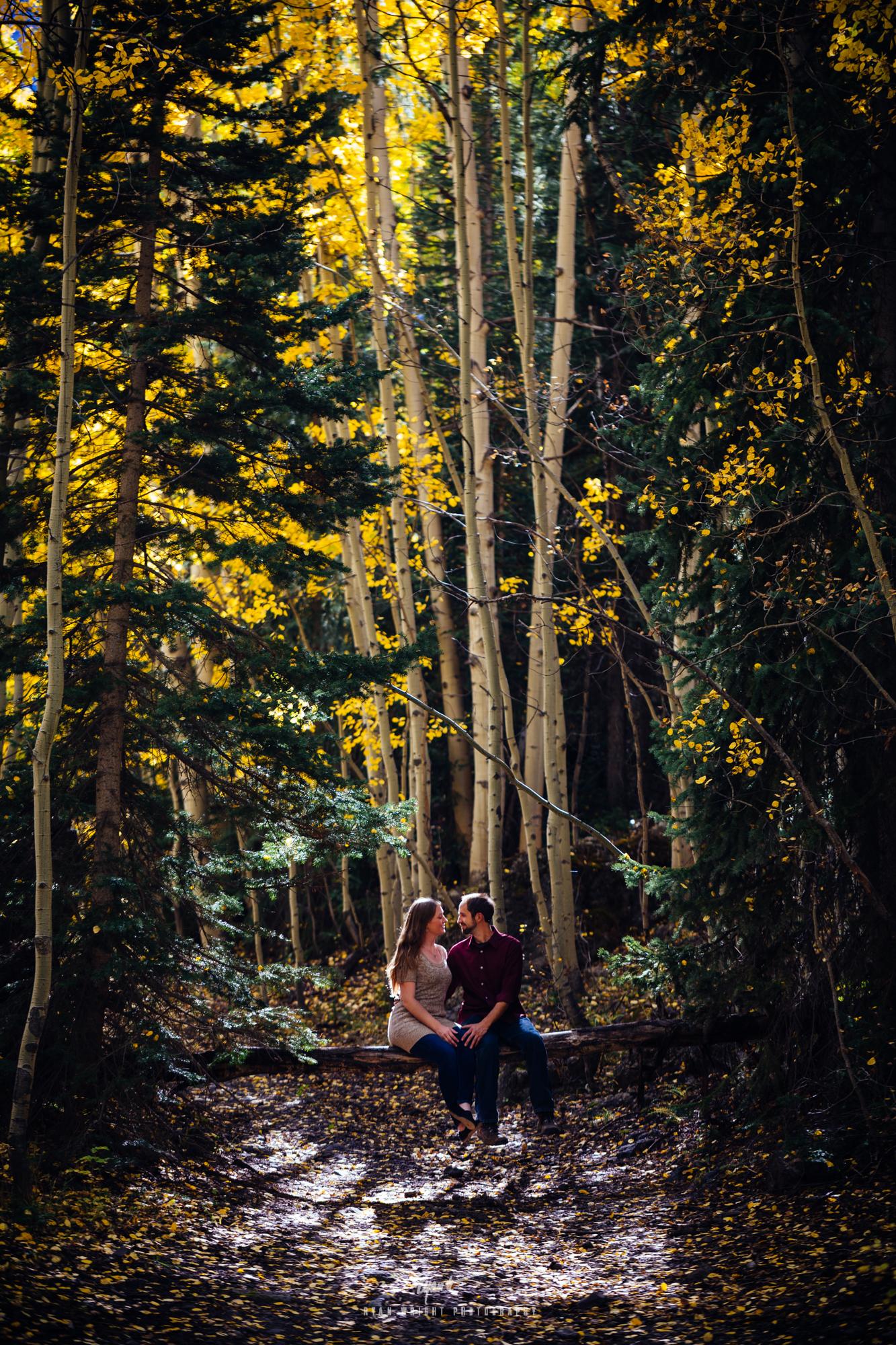 ouray-wedding-photographer-13.jpg