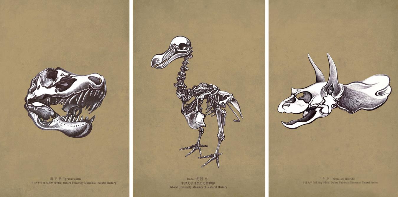 ruolan drawings.jpeg