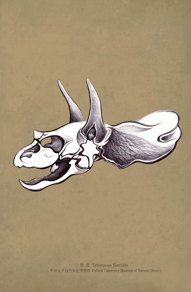 ruolan drawing triceratops.jpeg