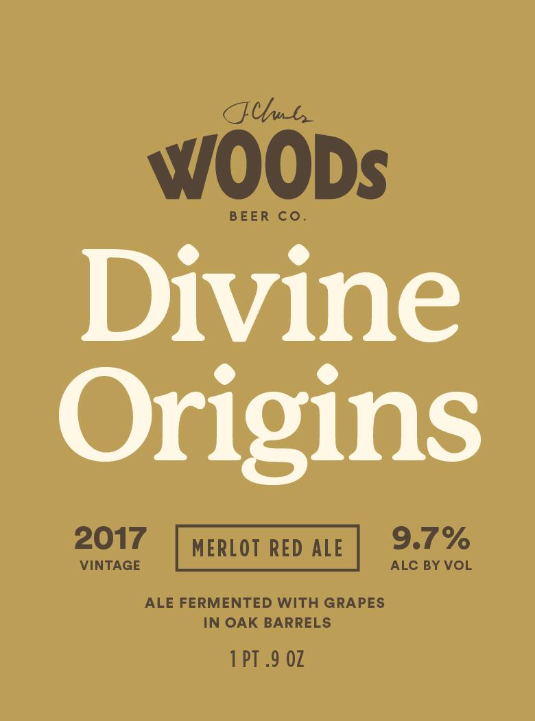 DivineOrigins-02.jpg