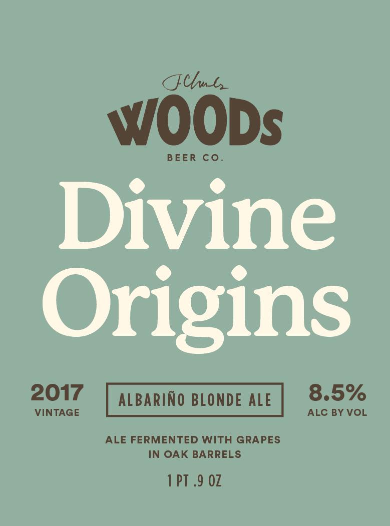 DivineOrigins-03.jpg