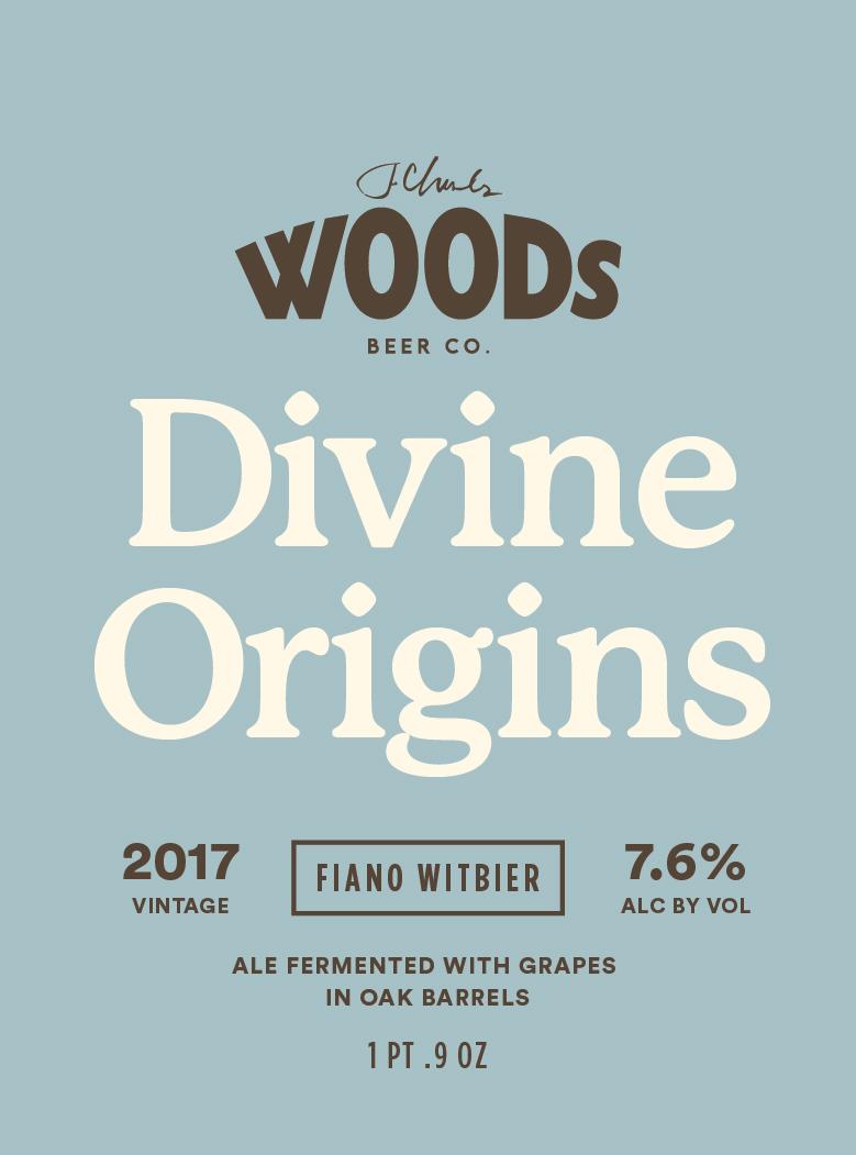 DivineOrigins-04.jpg