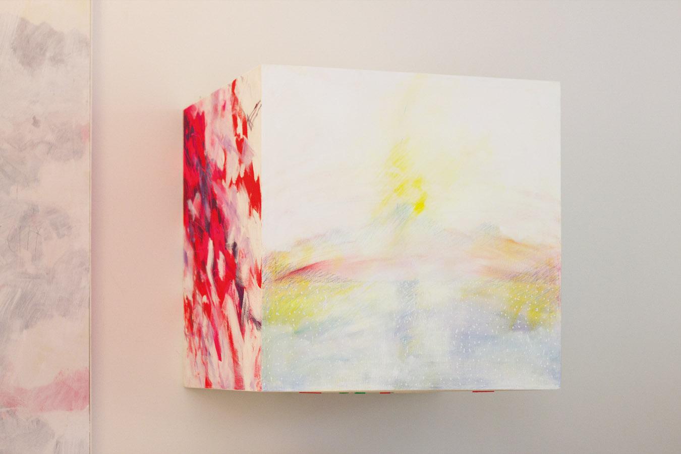 Fivesenses (Cubo) Sight, acrylic, graphite, plexiglass, pigment, plastic mesh on canvas, 80x80x80 cm