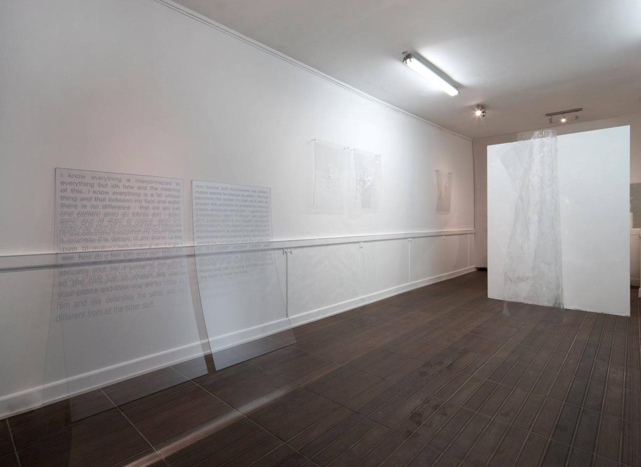 tbh I dunno if I have feelings, 2016. Exhibition view. Courtesy Ben Elliot & ARTAGŌN