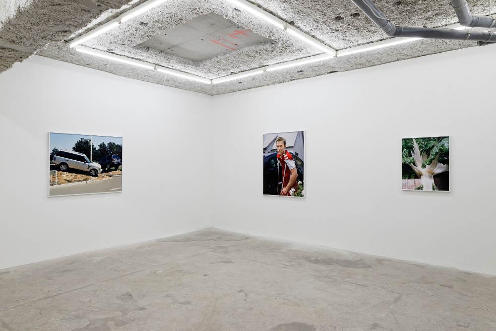 Installation view, Louisa, Balice Hertling, Paris, 2016