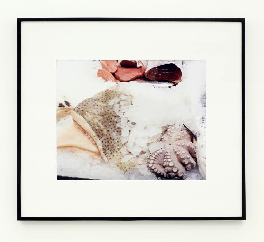 Strenuous Life,2013,archival inkjet print,62 x 79 cm