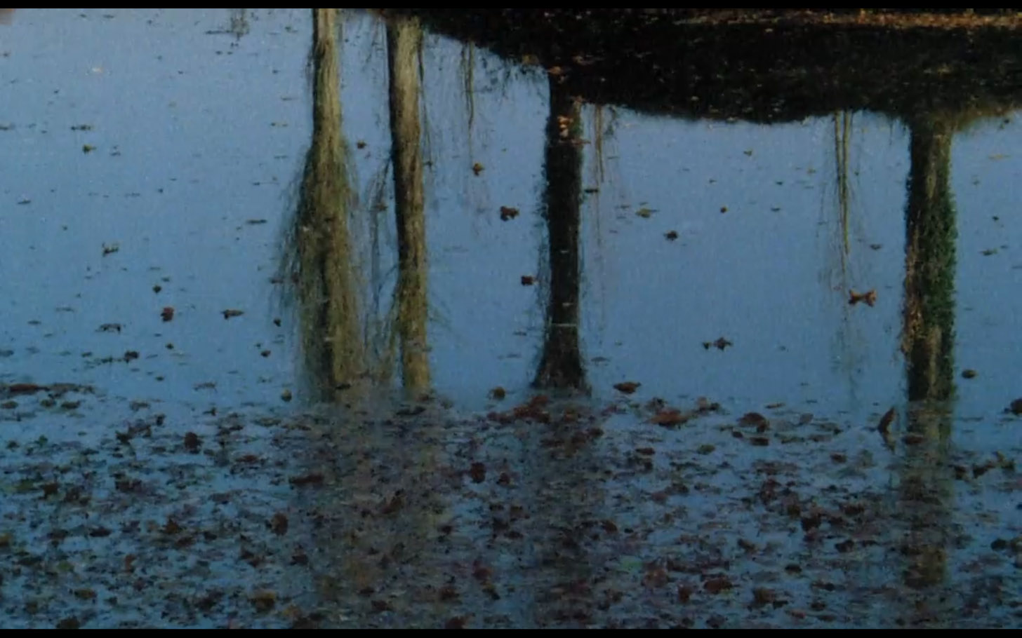 sans-soleil-1983-08.jpg