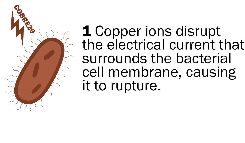 COPPER DUCT COBRE29_12.jpg