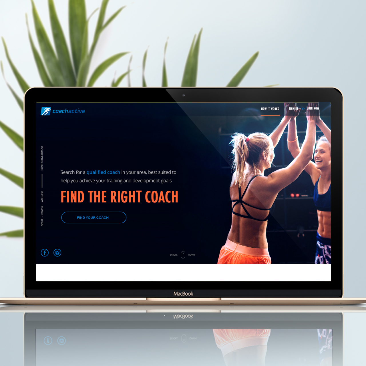 COACHACTIVE     View Project →