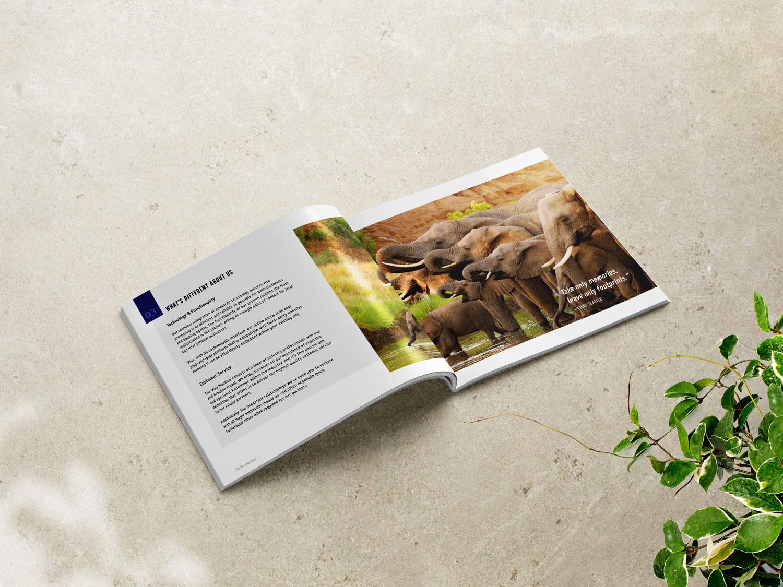 The-visa-machine-square-brochure-africa.jpg