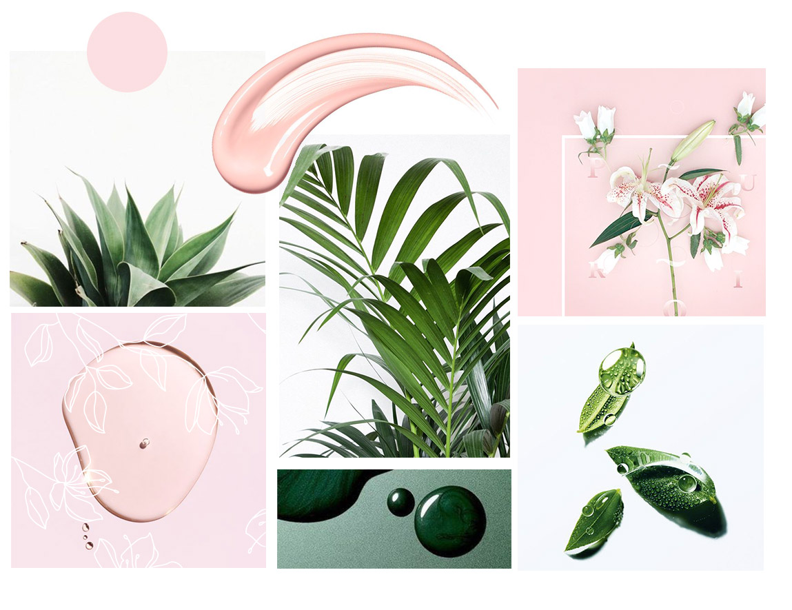 Above, brand Identity mood board featuring soft pinks and organic elements, as well as some botanical illustrations. Below, some branded business stationery items as well as some website shots