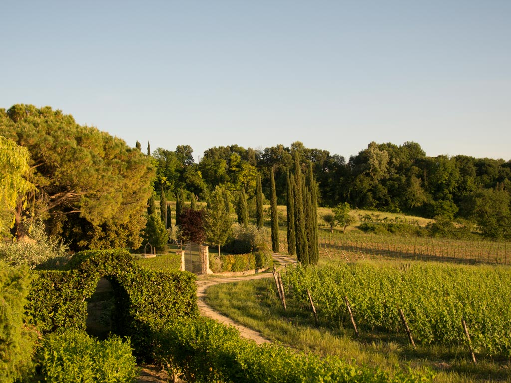 wedding venue chianti.jpg