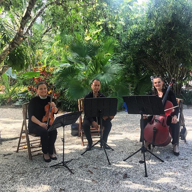 #stringtrio #miami #livemusic #music #ceremony