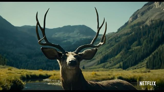 🦌 The new trailer for The Ballad of Buster Scruggs is out. Check the link in bio..... what do you think? . . . #netflix #netflixmovies #coenbrothers #vfx #vfxartist #millny #visualeffects #nuke #compositing #vfxcompositing #kylecody #kylecody.vfx #kylecody.art #creative #3d #3dart #mdcommunity #mgcollective #kylecody.creative #vfxnews #artstationhq #balladofbusterscruggs @busterskruggs #liamneeson #jamesfranco #tomwaits @mill_film @millchannel @mill_ny