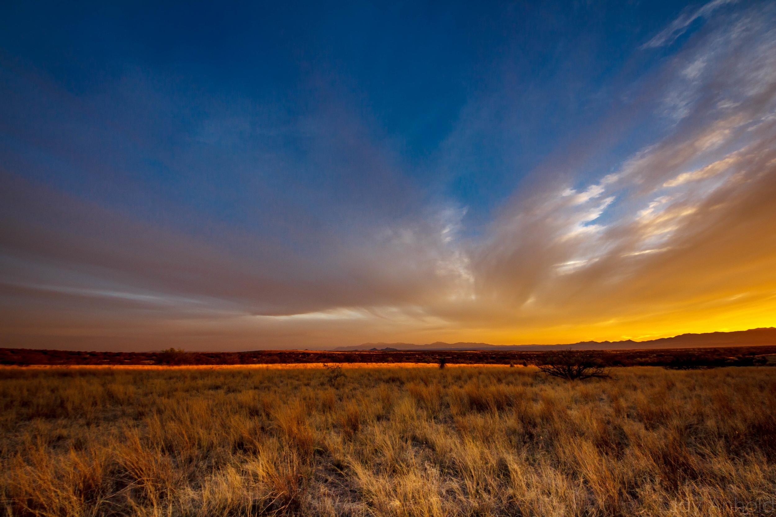 Western Grasslands