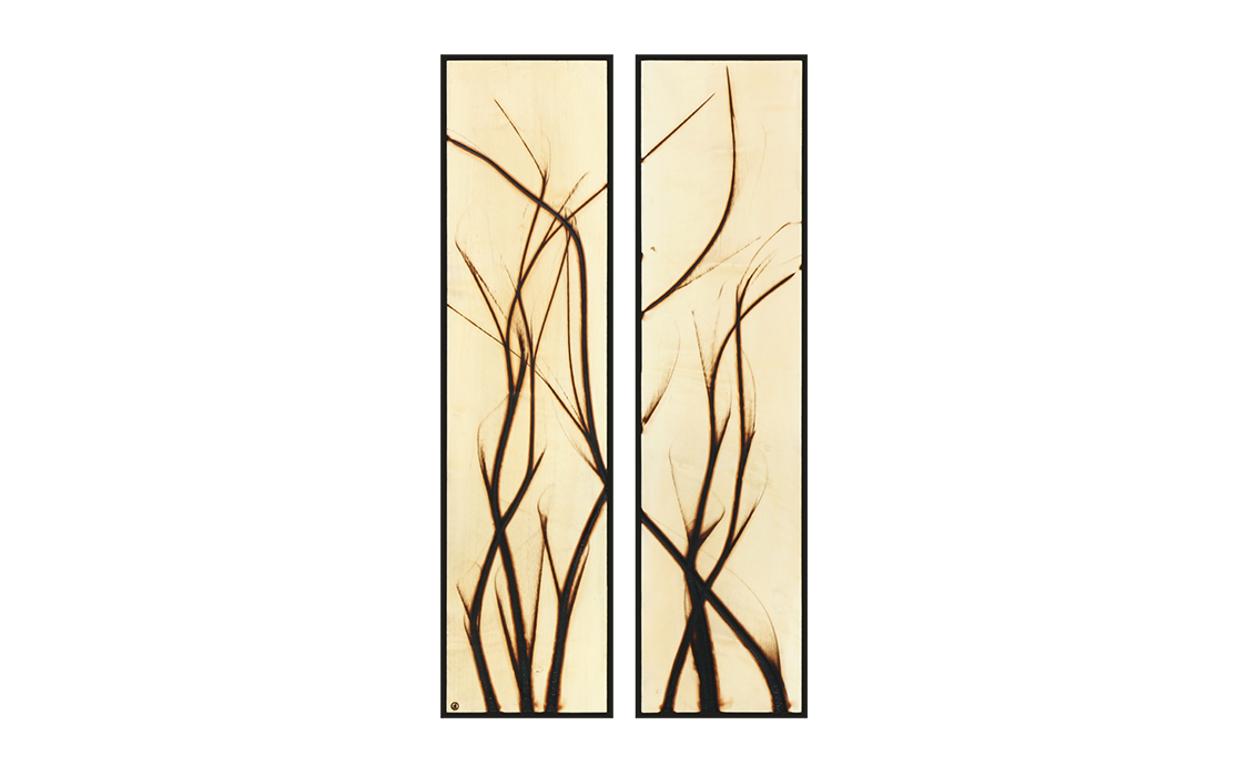 Burnt Panel Diptych No. 38