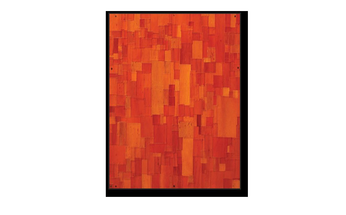 Textured 'Painting' Bark No. 6