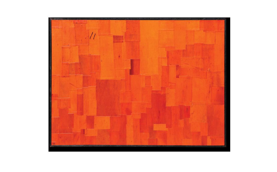 Textured 'Painting' Bark No. 8