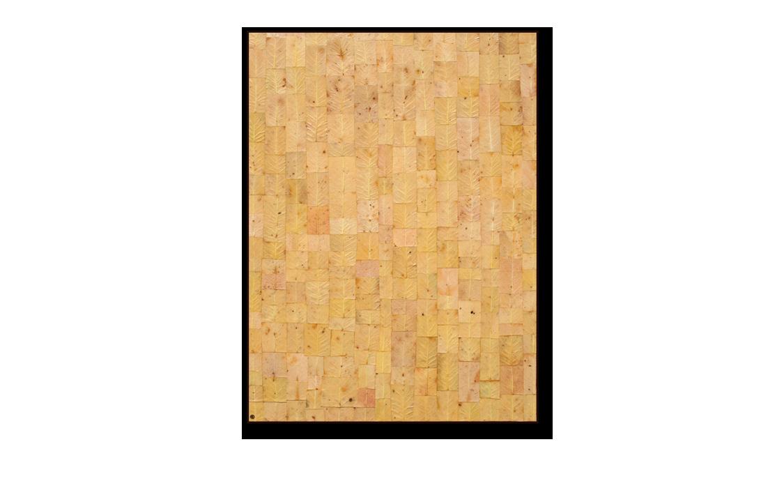 Textured 'Painting' Bark No. 1
