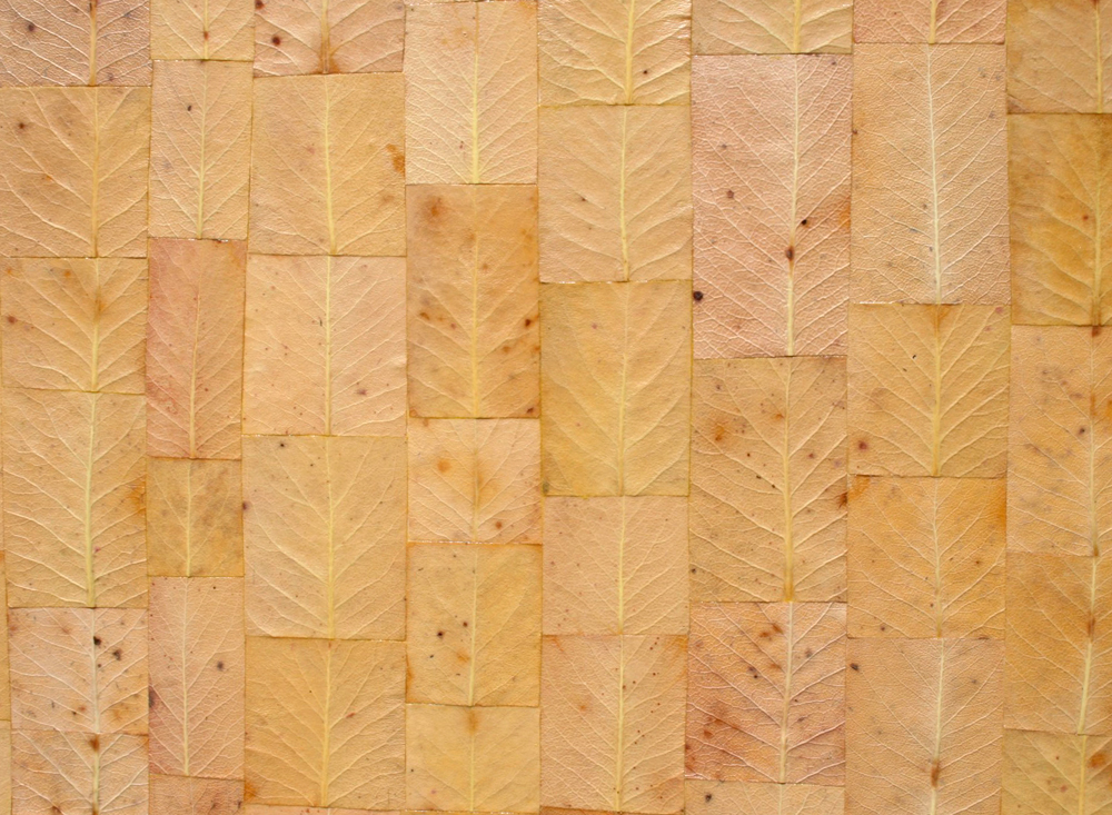 Detailed patchwork of aTextured 'Painting' madrone leaves piece.