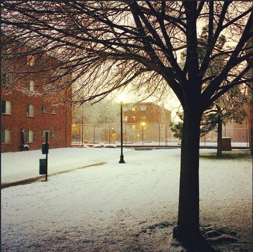 #Snowday in #denver