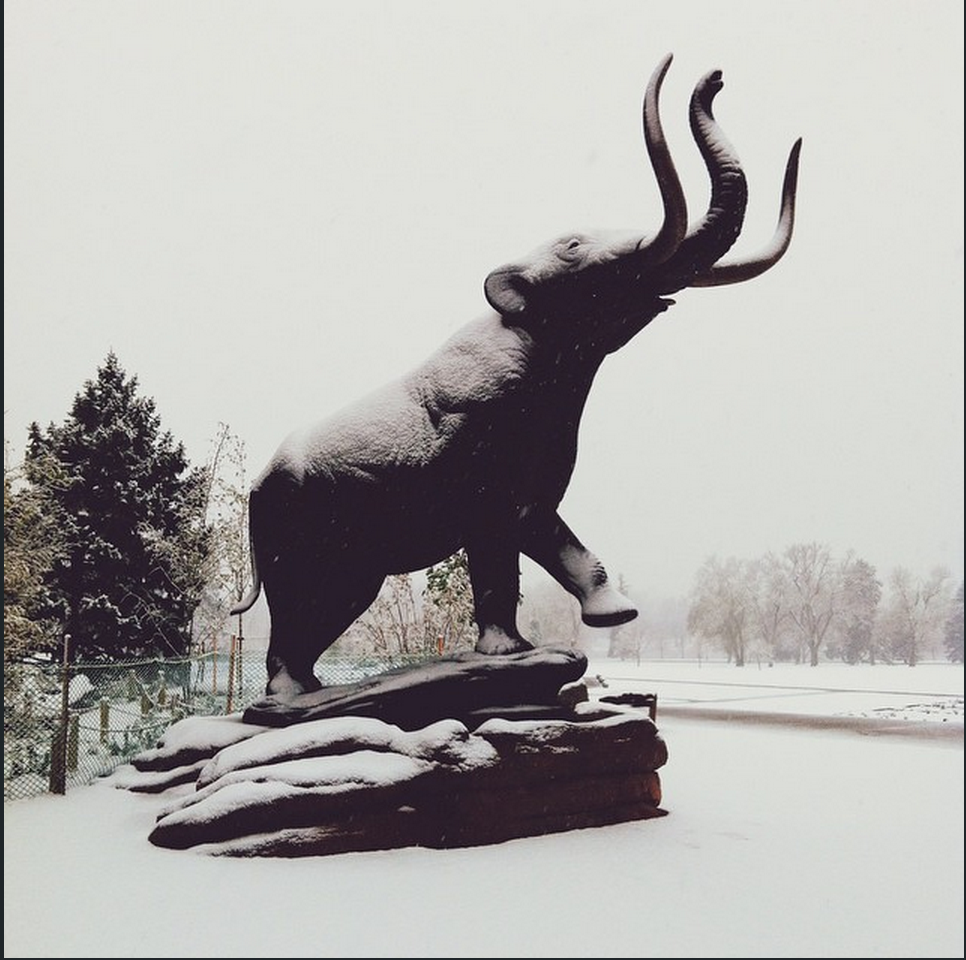 The Snowmastodon living up to its name!