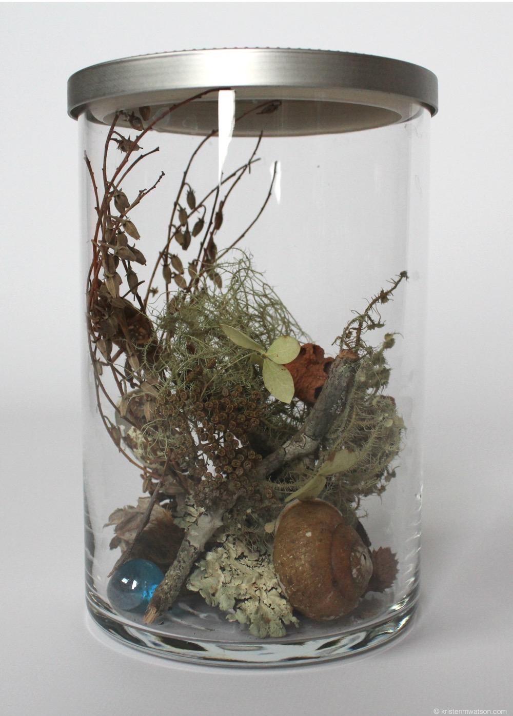 Reliquary_Found organics (South Carolina)_3x7in._©2015 Kristen M. Watson Art Studio, LLC_1 2.jpg