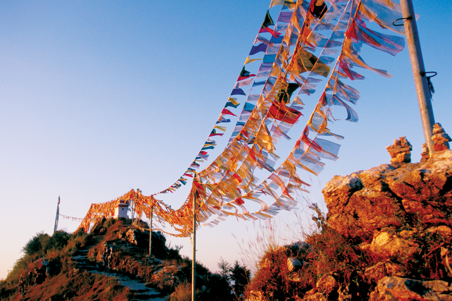 Prayer flags - which serve as reminders of compassion in meditation - inspire this wish:  May whoever is touched by the wind that blows upon these flags find happiness and be free from suffering.
