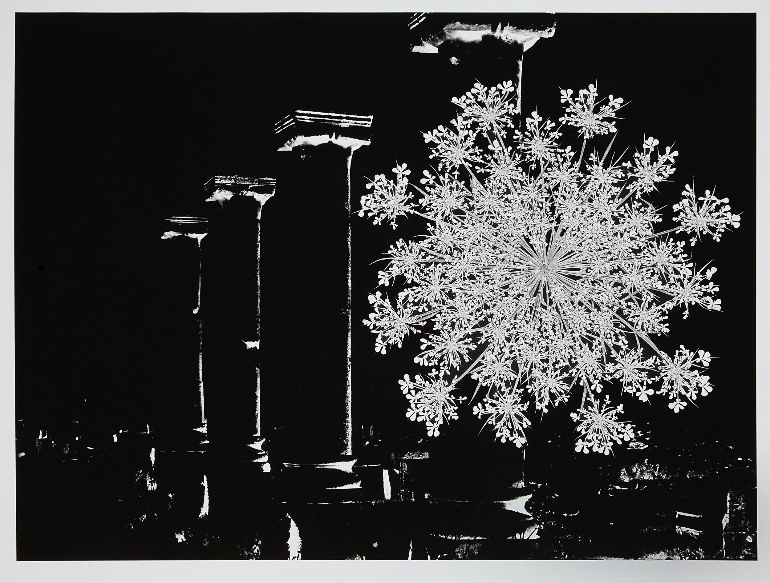 Barbara Goodbody,  Shared Memories  portfolio, 2012, 3/5, Ink jet print, 19.5 x 14 inches