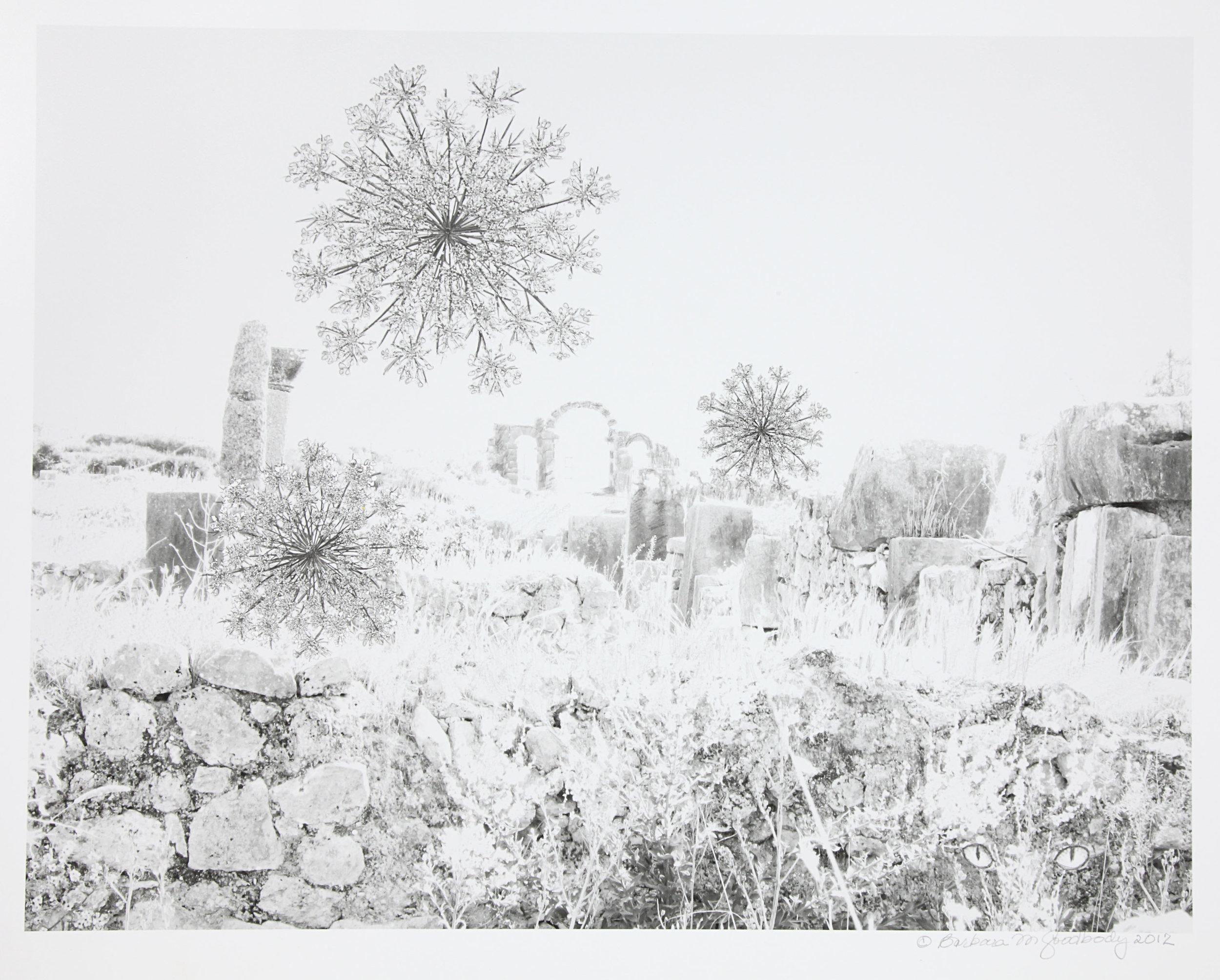Barbara Goodbody,  Shared Memories  portfolio, 2012, 4/5, Ink jet print, 19.5 x 14 inches