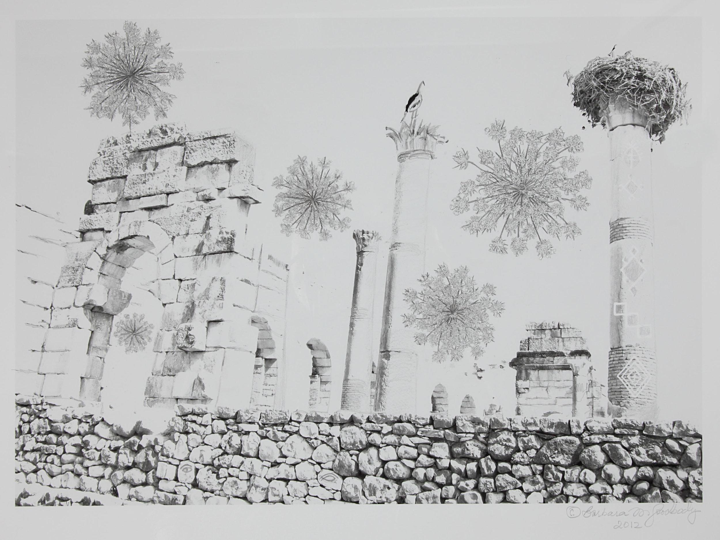 Barbara Goodbody,  Shared Memories  portfolio, 2012, 6/5, Ink jet print, 19.5 x 14 inches