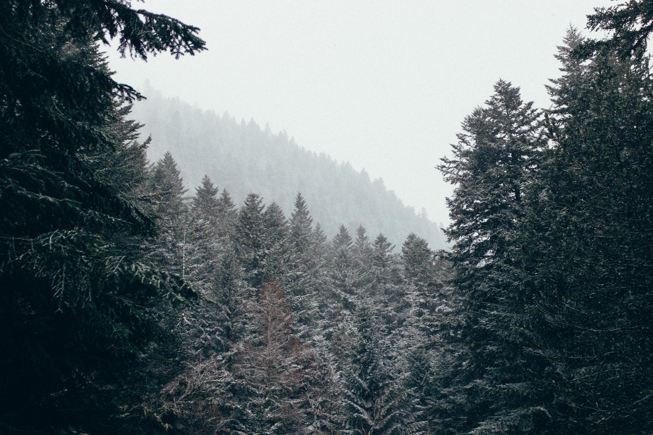 Expedición Pirineus | Foto:Adrián Cano