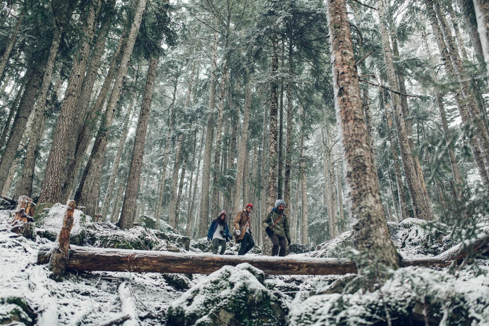 Explorando los bosques nevados de los Pirineos | Foto: Jordi Rulló