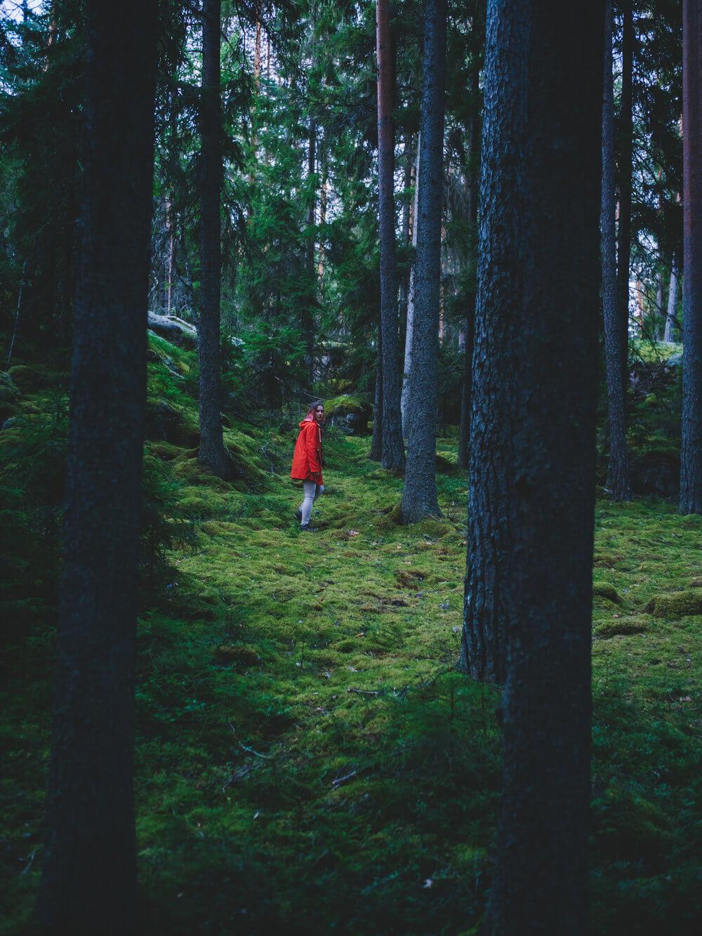 Explorando el inmenso bosque finlandés | Foto: Álvaro Sanz