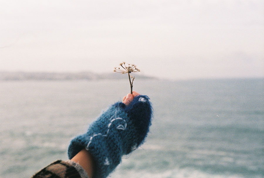 mano-aguantando-flor-en-la-playa.jpeg