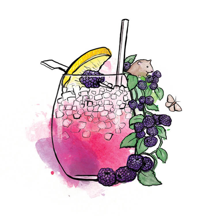 Detailed bramble cocktail illustration