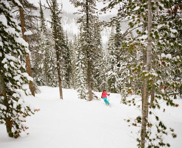 Kristine Ski.jpg