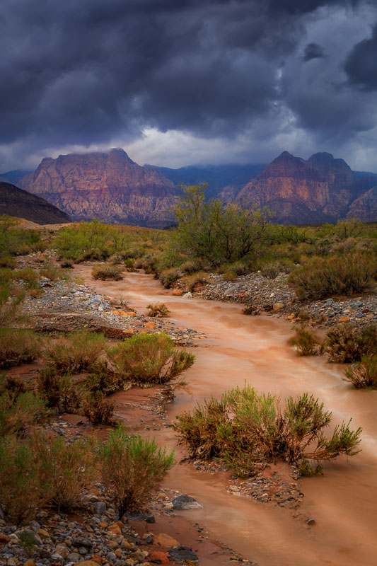 Red Rock Runoff, Red Rock Canyon National Conservation Area