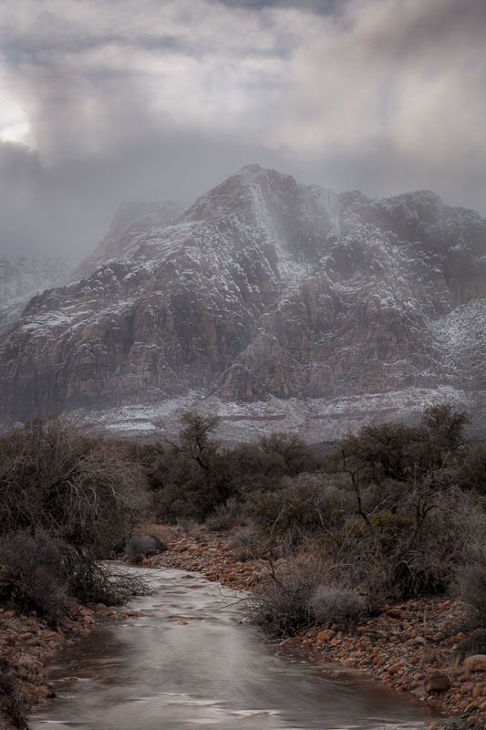 Gray Winter on Pine Creek, Red Rock Canyon National Conservation Area